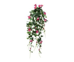 Plantas colgantes naturaleza en tu casa westwing - Plantas colgantes ...