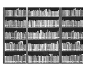 Carta da parati bianca e nera eleganza optical dalani e for Carta da parati libri