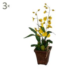 Vasi per orchidee romantiche composizioni dalani e ora for Vasi per orchidee ikea