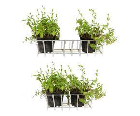 Porta piante da esterno bellezza e praticit dalani e for Piante per ingresso esterno