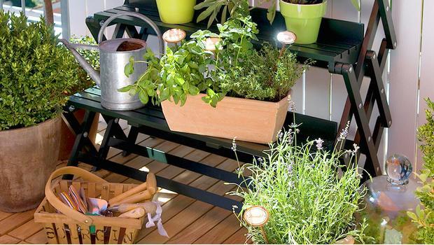Balkon-Gärtnern leicht gemacht