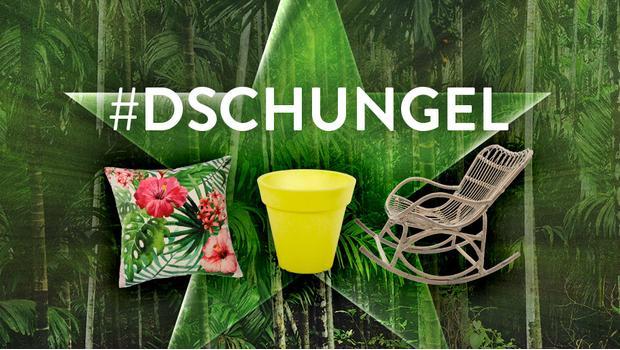 #Dschungel