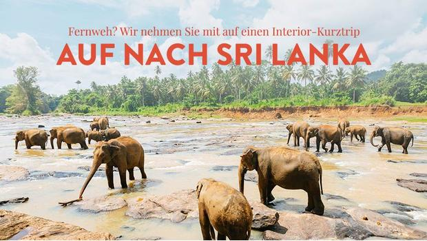 Urlaub auf Sri Lanka