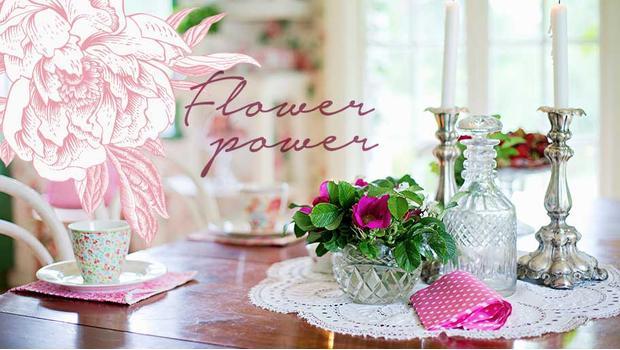Kvítka, kytky, kytice