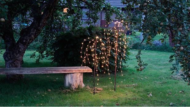 Světlo v zahradě