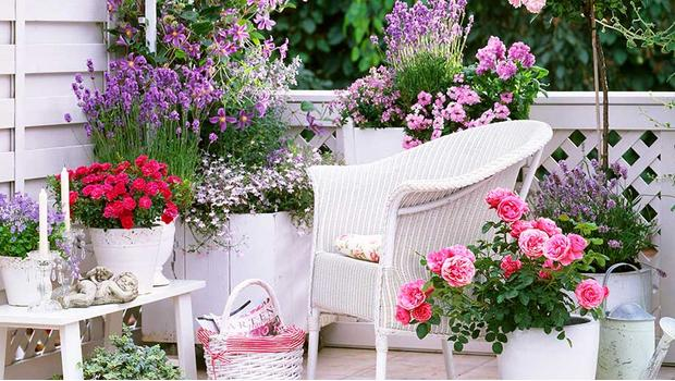 Zahradní mámení