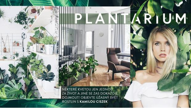 Trendbook: rostliny sezóny