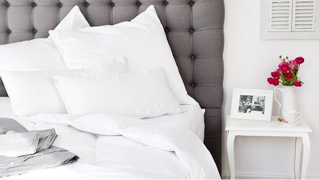 Schäfer Bettwaren