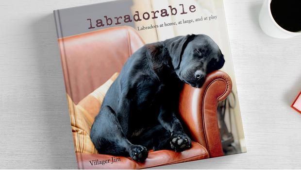 Accessoires für Hunde-Fans