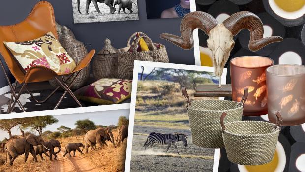 Interieur-Reise durch Afrika