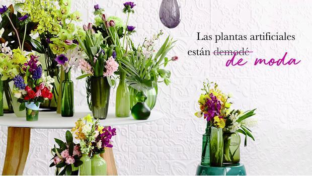 Las plantas, siempre naturales