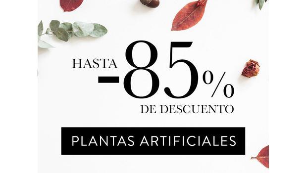 Extra Muestras: Plantas