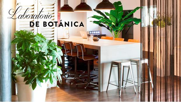 Laboratorio de botánica