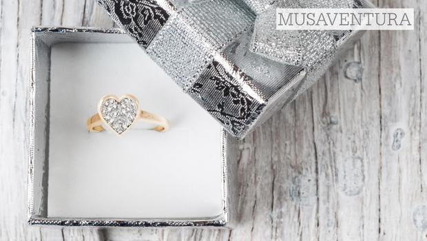 Musaventura