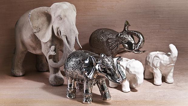 Elefant Part 1 (Boltze,India Circus, La Casa di Caesar) (Teil 1)