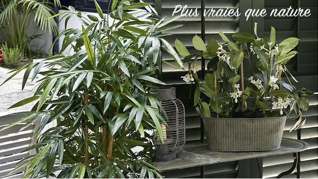 plantes artificielles passez au vert westwing. Black Bedroom Furniture Sets. Home Design Ideas