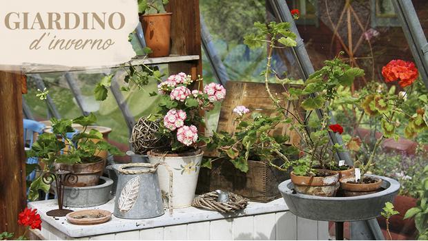 Giardino da cottage