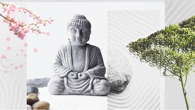Oasi Zen