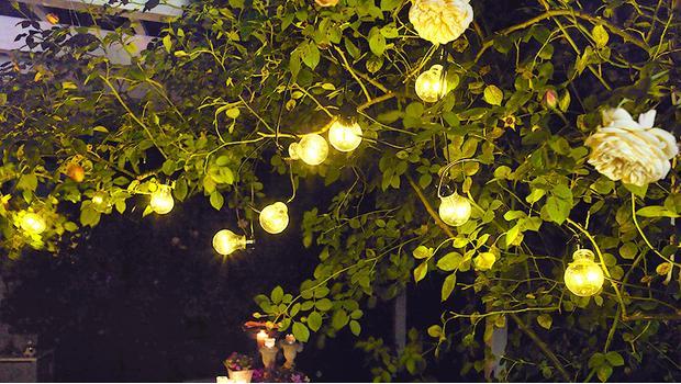 Illumina la sera