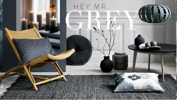 Hey, Mr Grey!