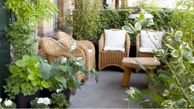La casa moderna facile new trend 2018 crea il tuo orto - Crea il tuo giardino ...