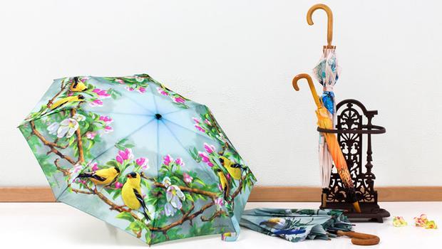 Путешествие под зонтом