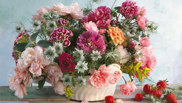 Floramaster