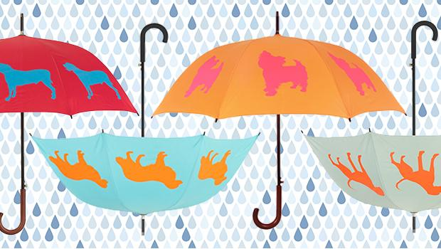The San Francisco Umbrella Company