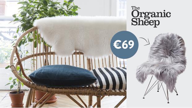 The Organic Sheep