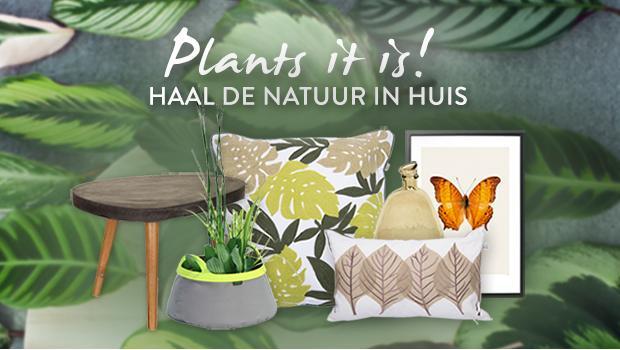 Plants it is!
