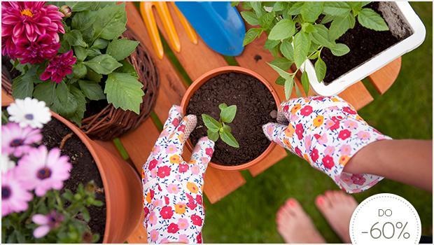 Twój tajemniczy ogród