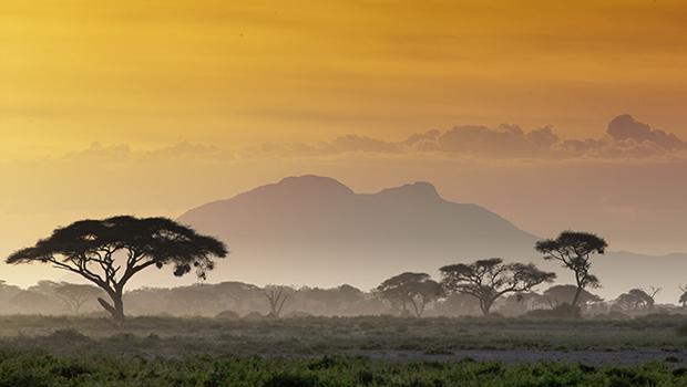 Powitanie z Afryką