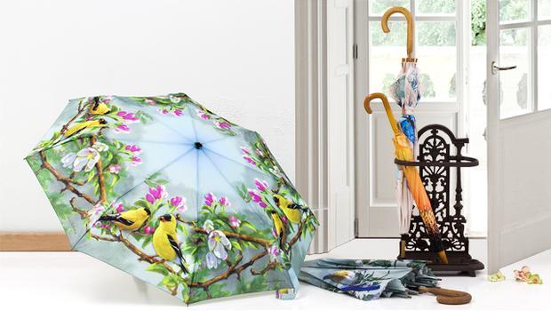 Galeria parasoli