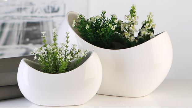 Wszystko dla roślin