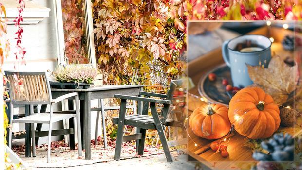 Jesienny taras
