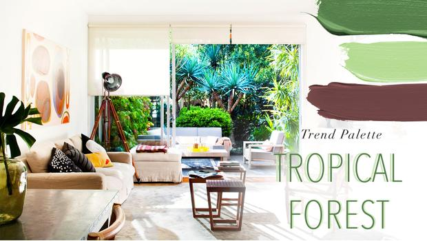 TREND: TROPICAL FOREST