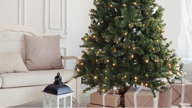 Świąteczne drzewka