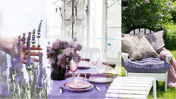Lawendowy stół