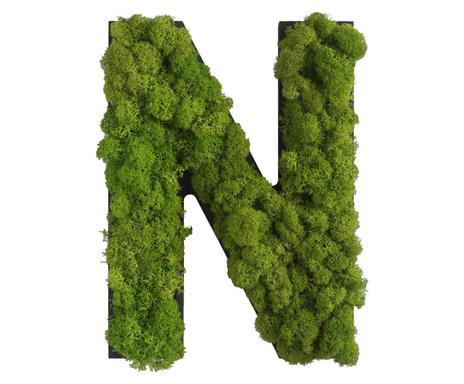 Stylegreen trendy pflanzen deko f r die wand westwing for Pflanzen deko wand