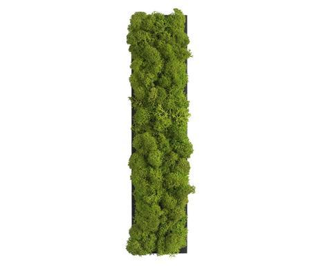 stylegreen trendy pflanzen deko f r die wand westwing. Black Bedroom Furniture Sets. Home Design Ideas