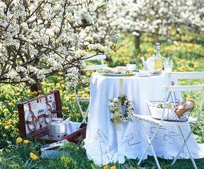 Meble ogrodowe, latarenki, dekoracje