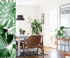 Drewniane meble i naturalne dekoracje